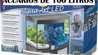 Photo of Best 100 Liter Aquariums