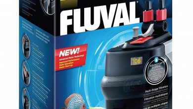 Photo of Best Fluval Filters