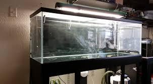Photo of Marine Aquarium