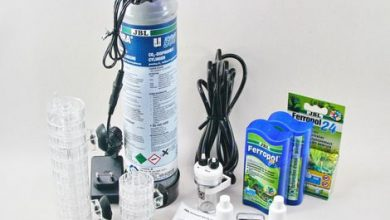 Photo of Best Co2 Kit for Planted Aquarium