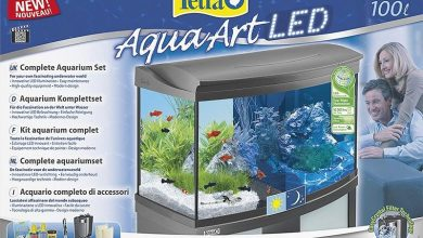 Photo of The Best Tetra Fish Tanks and Aquariums